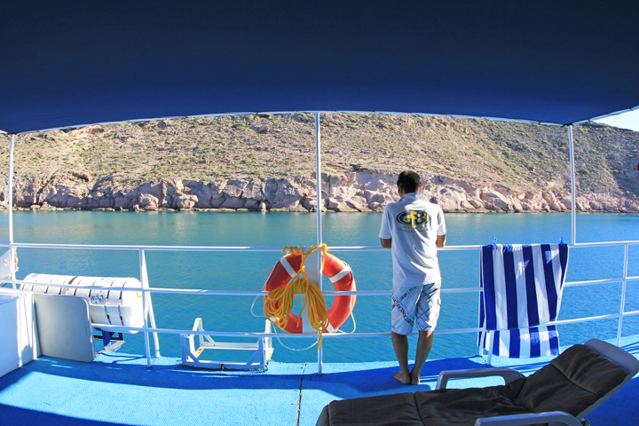 Cruiseの朝.jpg