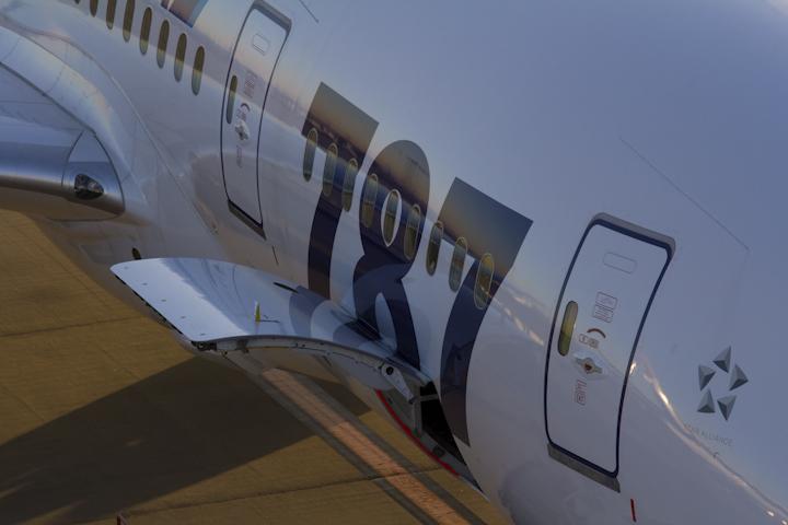 胴体B787ロゴ.jpg